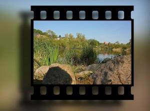 SWFLTech Video Clip